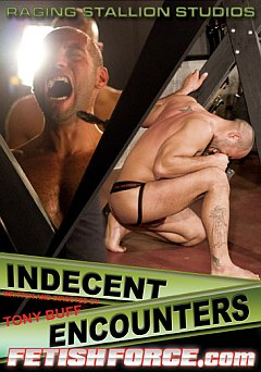 Indecent Encounters Raging Stallion
