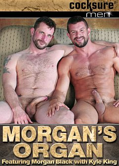 Morgans Organ Cocksure Men