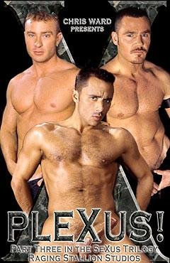 Plexus Raging Stallion